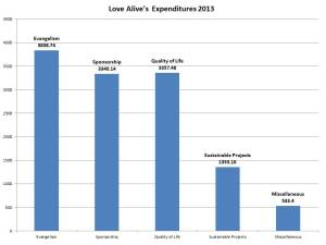 Expense summary 2013